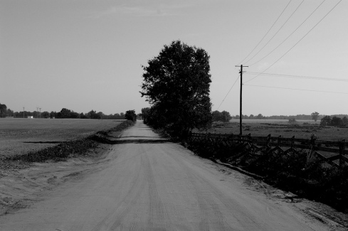 dirt road, rural alabama_493344286_l