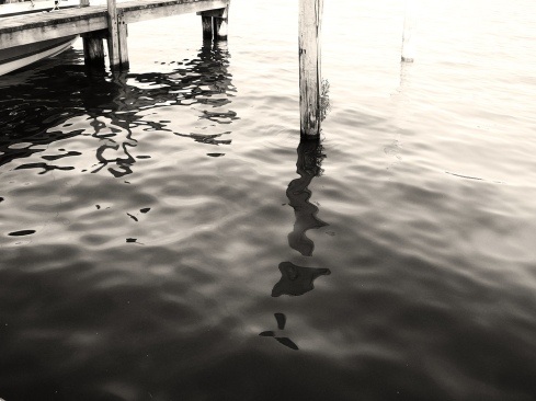 empty dock_751695410_l
